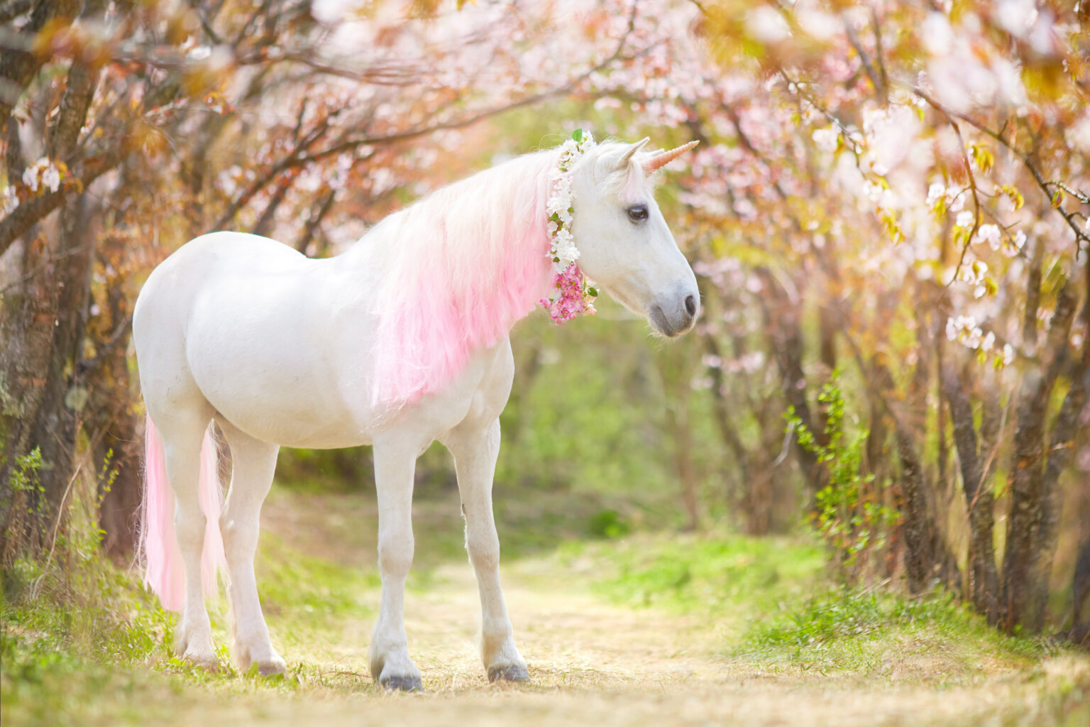 unicorn with pink mane walking through a forest